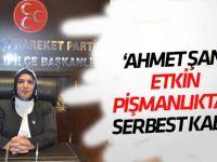 Güzide Çıpan: Ahmet Şan etkin pişmanlıktan serbest kaldı