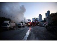 Şişli'de kurbanlık barınağında yangın