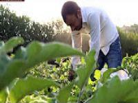 Hevsel Bahçeleri'nde 8 bin yıldır tarım yapılıyor VİDEO HABER
