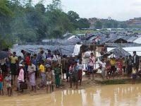 IOM Sözcüsü Millman: Bangladeş'e sığınan Arakanlı Müslümanların sayısı 421 bine ulaştı