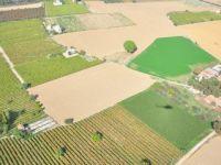 Konya tarım arazisinde ilk sırada