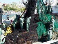 Karadenizli balıkçılar Marmara'da 'istavrit' peşinde