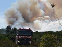 Nurettin Baransel Kışlası ormanlık alanındaki yangın