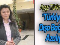 Cumhurbaşkanı Başdanışmanı Türkmenoğlu, Türkiye'de dışa bağımlılığın azaldığını söyledi