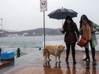 Meteoroloji uyardı... Sağanak yağış devam edecek!