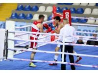 Spor Toto Türkiye Boks Ligi'nde kuralar çekildi