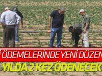 Çiftçi desteklemeleri 2 kalemde yapılacak