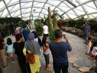 Tropikal Kelebek Bahçesi Konya'nın Favori Ziyaret Mekanı Oldu