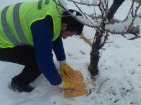 Kış Şartlarında Sokak Hayvanlarına Sahip Çıkalım
