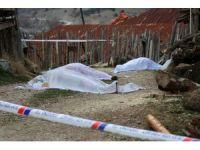 Bolu'da iki aile arasında silahlı kavga