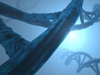 Genlerin empati kurmaktaki rolü keşfedildi