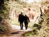 Dünyada yaşlı nüfusu giderek artıyor