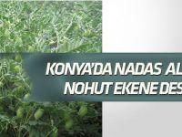 Nadas alanları tarıma kazandırılacak