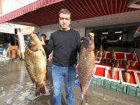 Beyşehir'de baraj balıkları tezgahtaki yerlerini aldı