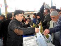 Seydişehir'de 9 Bin Fidan Dağıtıldı