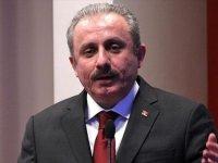 TBMM Anayasa Komisyonu Başkanı Şentop: Milletvekili havuzunda da ortak olduklarını gösterdiler