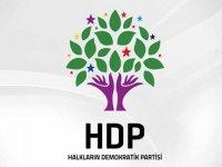 DBP'li eski başkanlara ve HDP'li yöneticilere hapis cezası