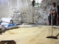 155 yıllık taş değirmende tahin üretimi