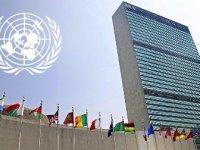 BM insan hakları uzmanından Fransa'ya uyarı