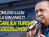 Seçimlere 6 Gün Kala Son Anket! Erdoğan, İlk Turda İpi Göğüslüyor