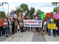 İzmir'de hayvanlara yönelik şiddete tepki