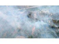 Ziraat alanında başlayan yangın ormana sıçradı