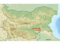Bulgaristan'nın Türkiye sınırında veba görüldü
