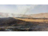 Alevler 65 dönümlük buğday tarlasını kül etti