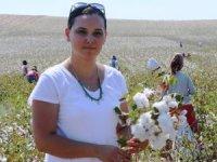 Çukurova'da pamuk hasadı başladı
