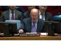 """Rusya'nın BM Daimi Temsilcisi: """"Şu an İdlib'te aktif bir terör var"""""""