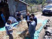 Tescilli organik fasulyenin kilosu 25 lira