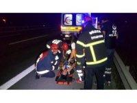 TEM'de feci kaza  5 yaralı