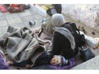 Ayvalık'ta jandarma 22 göçmen 1 organizatör yakaladı