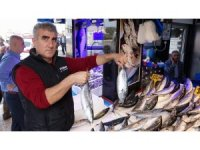 Trabzon'da palamutta sezonun en verimsiz günü yaşanıyor