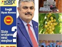 Ereğli'nin ürünleri Yörex ile Akdeniz'de