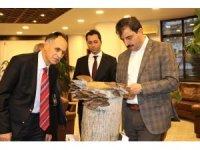 İstiridye mantarı satışı için Başkan Türkmen'den yer talep ettiler