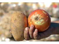 Tüketiciye patates ve soğandan bir kötü haber daha