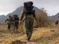 18 PKK'lı teröristi 'eşek arısı' öldürdü!