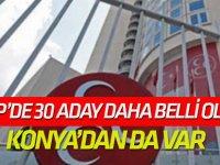 MHP'de 30 belediye başkan adayı daha belli oldu!