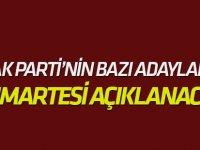 Erdoğan: Cumartesi bazı adayları açıklayabiliriz
