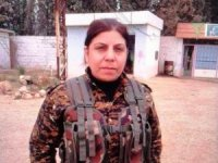 Şanlıurfa'da gözaltına alınan kadın terörist tutuklandı