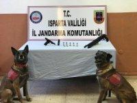 Isparta'da 3 suçtan aranan şahsın evine operasyon