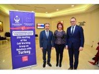 Avrupa Birliği Türkiye Çalışma Grubu Toplantısı