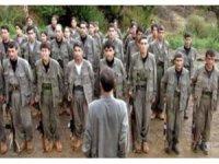 Çarpık ilişkiler örgütü PKK