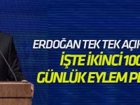 Erdoğan tek tek açıkladı... İşte ikinci 100 günlük eylem planı!