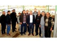 Sarıgöl'de 21 Genç çiftçiye 105 düve dağıtıldı
