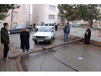 Çürüyen telefon direği sokağa devrildi