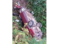 Otomobil fındık bahçesine uçtu: 1 yaralı