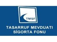 TMSF'deki şirketlerin piyasa değeri 55 milyar TL