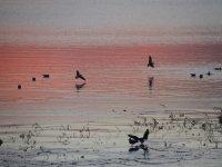 Beyşehir Gölü Milli Parkı'nda su kuşları sayılıyor